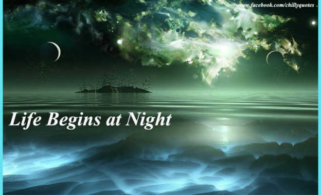 life begins at night