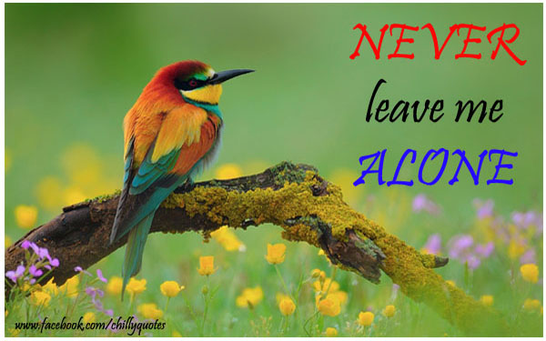 never leave alone