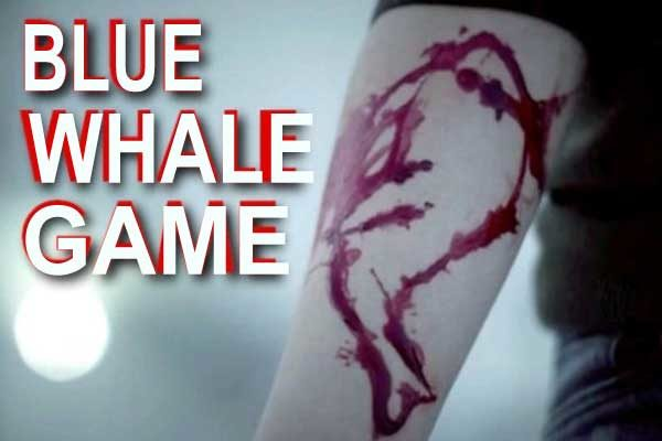 Save your Family Members by Learning the Shocking Facts of Blue Whale Suicide Game